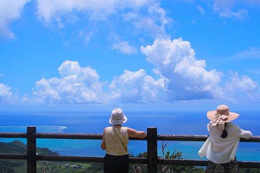 Ishigaki Island, Coral Reefs, Leaf, Sea, Pacific