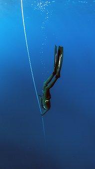 Freediving, Diving, Sea, Underwater, Water, Dive, Sport