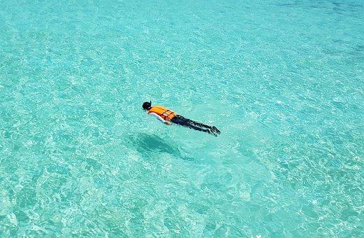 Maldives, Snorkeling, Swimming, Emerald, Sea