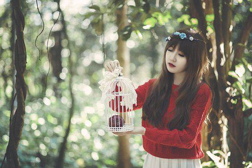Girl, Cage, Female, Fashion, Style, Model, Woman, Young