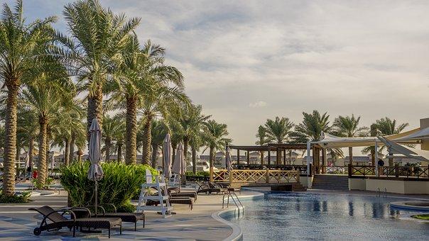 Bahrain, Palm, Tree, Pool, Arab, Sea, Travel