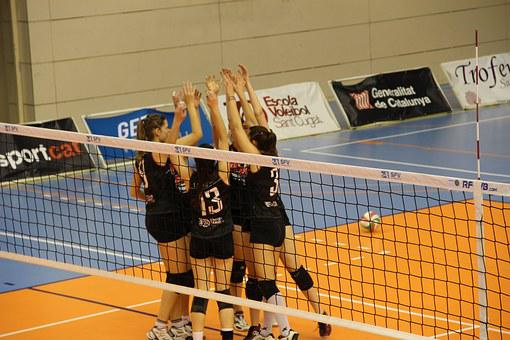 Volleyball, Party, Win, Sport, Women, Team, Together