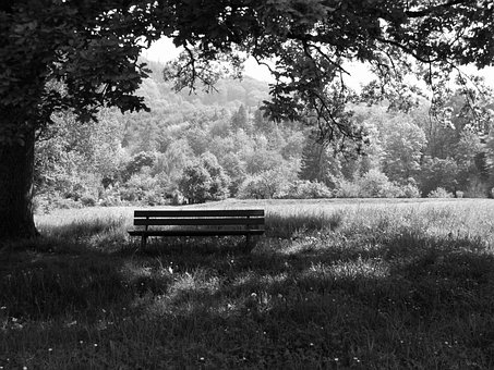 Bank, Park Bench, Recovery, Rest, Bench