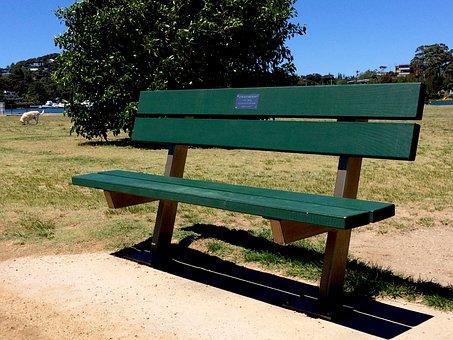 Park Bench, Bench, Park, Grass, Green, Summer, Tree