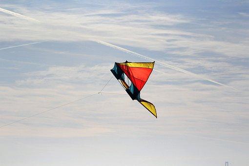 Dragons, Cord, Autumn, Flying Kites, Dragon Rising