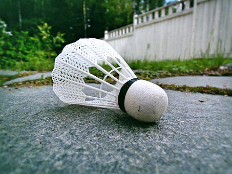 Badminton, Ball, Feather, Game, Summer Species