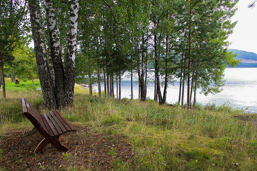 Bench, Lake, Nature, Water, Park, Fall, Autumn, Summer
