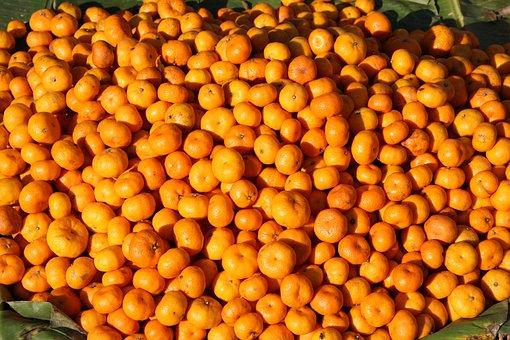 Tangerines, Orange, Food, Eat, Fruit, Healthy, Vitamins