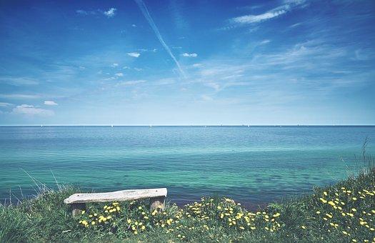 Baltic Sea, Holiday, Bank, Dandelion, Sky, Park Bench