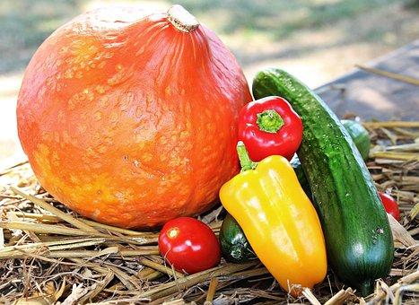 Thanksgiving, Pumpkin, Paprika, Cucumber, Tomato