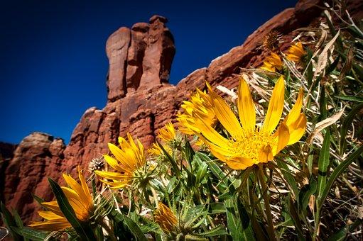 Arches National Park, Utah, Landscape, Mountains