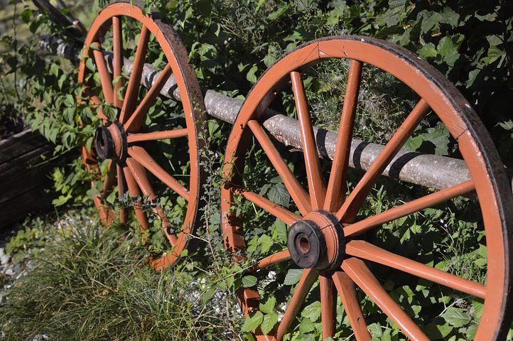 Wheels, Wheel, Nature, Wood, Green, Spokes, Locomotion