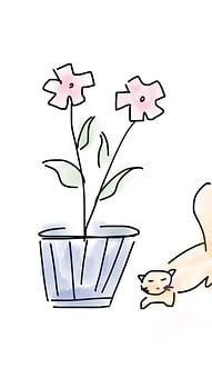 Flower, Cat, Animal, Pet, Cute, Plant, Kitty, Sweet