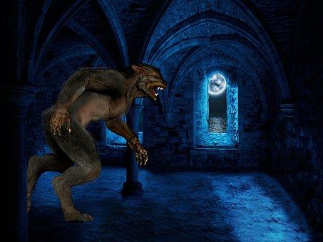 Werewolf, Luna, Castle, Window, Night, Full Moon