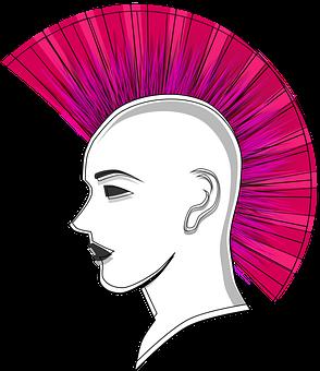 Iroquois, Man, Person, Face, Boy, Mohawk, Pink, Punk