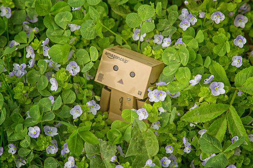 Danbo, Mood, Flowers, Toy, Background, Colorful