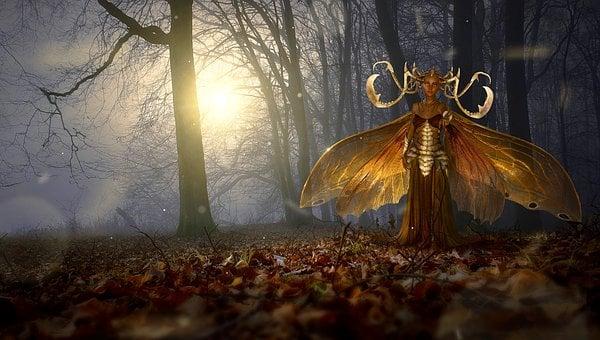 Fantasy, Forest, Magic, Light, Fairy Tales, Nature