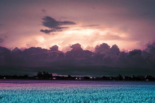 Sunset, Fields, Blue, Pink, Landscape, Nature, Sky