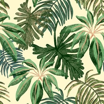 Leaves, Tropical, Plant, Palm, Summer, Exotic, Picture