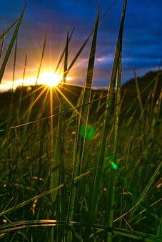 Sunset, Sky, Sonnenstern, Meadow, Landscape, Nature