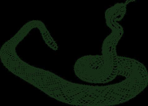 Rattle Snake, Serpent, Snake, Tribal, Rattler, Danger