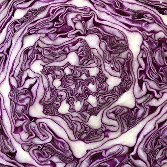 Purple Cabbage, Cabbage, Pattern, Pink Pattern