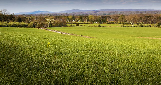 Shenandoah Valley, Virginia, Countryside, Fields