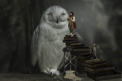 Fantasy, Wisdom, Owl, Man, Book, Hourglass, Knowledge