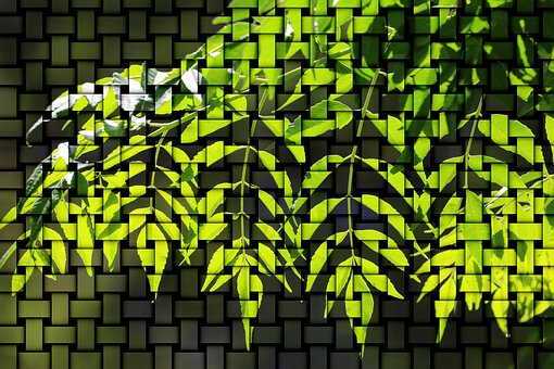 Pattern, Green, Backlighting, Plant, Background Pattern