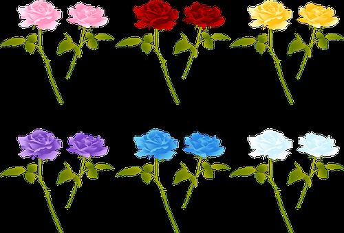 Rose Stem, Roses, Red, Stem, Floral, Blossom, Plant