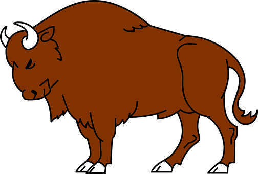 Bison, Animal, Wild, Buffalo, Wildlife