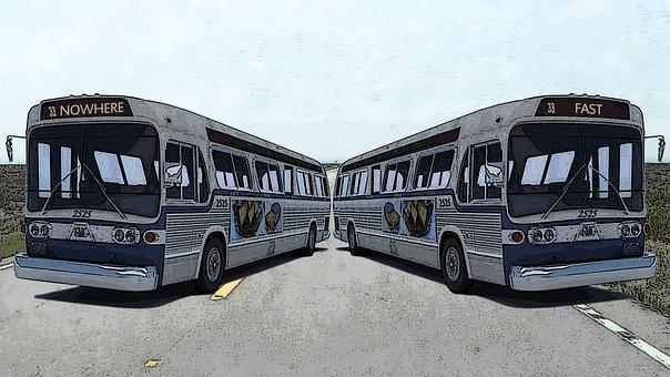 Bus, Buses, Transportation, Transport, Urban, Road