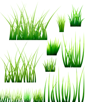 Grass, Green Blades, Meadow, Nature, Plant, Grasses