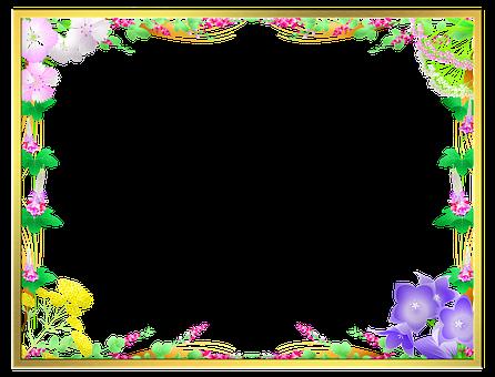 Floral Frame, Frame, Border, Floral, Decorative