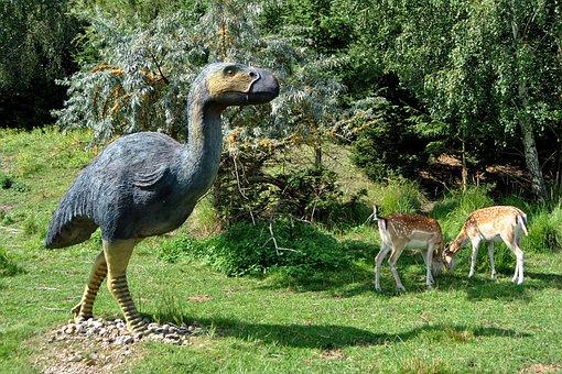 Sculpture, Animal Sculpture, Diatryma, Primitive Bird