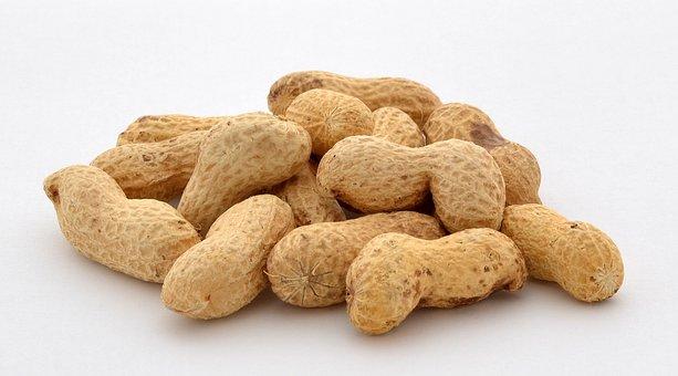 Peanuts, Nuts, Food, Snack, Healthy, Nut, Natural