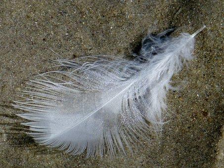 Feather, Slightly, Light-weight, Lightweight, Sand