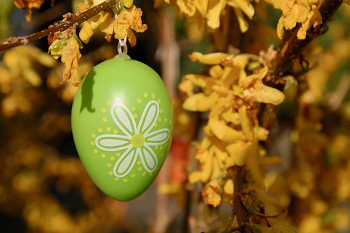 Easter Egg, Easter, Easter Branch