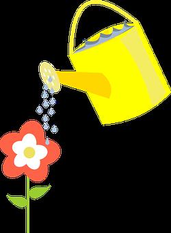 Ewer, Watering, Flower, Watering Can, Pot, Water