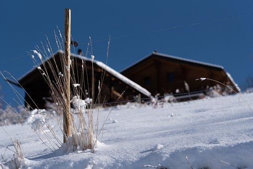 Snow, Winter, Chalet, Nature