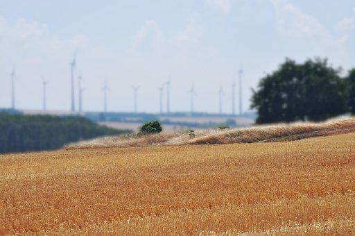 Windräder, Field, Harvest