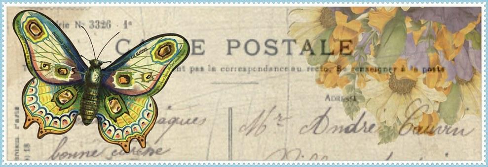 Flower, Butterfly, Post, Card, Banner, Web, Internet