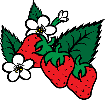 Strawberry, Fragaria, Berry, Food, Plants, Flower
