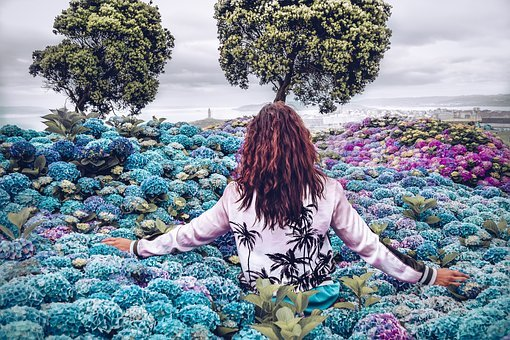 Purposes, Life, World, Flowers, Nature