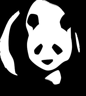 Panda, Walking, Face, Black And White, Silhouette, Wild