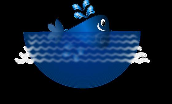 Whale, Blue, Happy, Mammal, Ocean, Sea