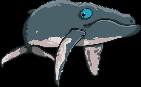 Kit, Gorbach, Mammal, Giant, Sea, Floaters, Cartoon