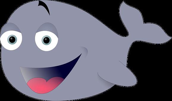 Blue, Whale, Large, Fish, Marine Life, Ocean, Sea, Grey