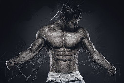 Man, Muscular, Body, Male, Fitness, Muscle, Biceps