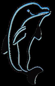 Dolphin, Outline, Animal, Sea, Ocean, Silhouette, Fish